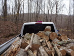 Firewood by Center for Folklore Studies and Ohio Field School and Katherine Borland